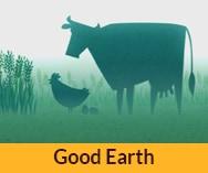 סרט תדמית באנימציה לחברת<br> Good Earth China