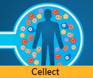 סרט תדמית באנימציה לחברת<br> Cellect