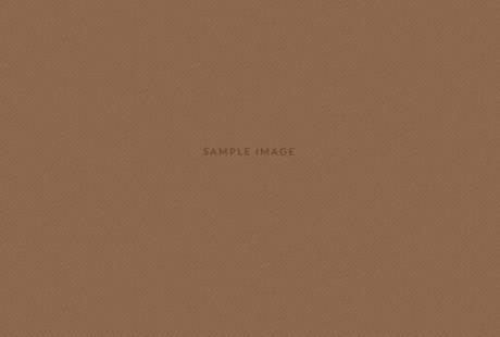 sample-brown-640x350